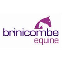 Brinicombe Equine