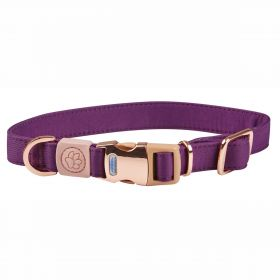 Weatherbeeta Elegance Dog Collar - Purple