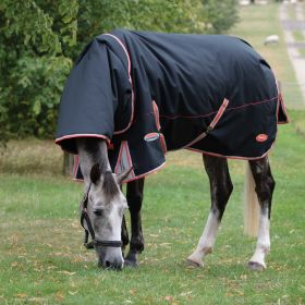 Weatherbeeta Comfitec Premier with Therapy-Tec Detach-A-Neck Medium Turnout Rug