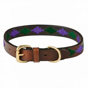 Weatherbeeta Polo Dog Collar - Beaufort/Brown/Purple/Teal