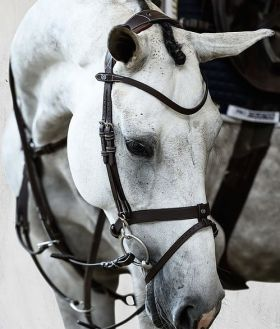 PS of Sweden London Flash Bridle