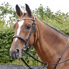 John Whitaker Lynton Snaffle Bridle with 2 Browbands