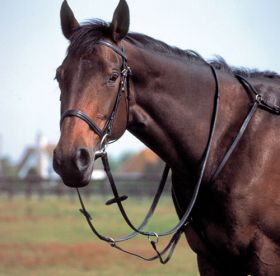 Windsor Equestrian Leather Breastplate