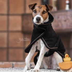 Kentucky Dog Coat Towel - Black