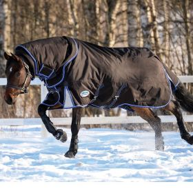 WeatherBeeta ComFiTec Ultra Cozi Detach-A-Neck Heavyweight Turnout Rug