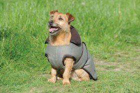 WeatherBeeta Tweed Dog Coat Olive
