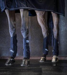 LeMieux Tendon Chill Boots (Pair) - LeMieux