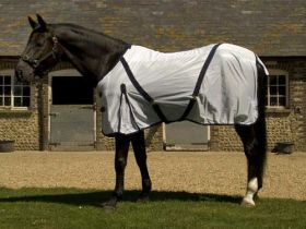 Rhinegold Fly Rug Includes Detachable Neck - Best Seller - Rhinegold