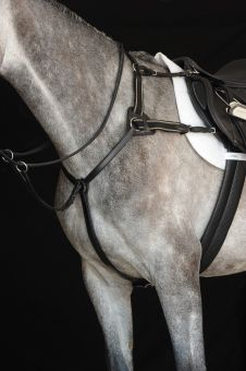 Collegiate 5 Point Breastplate Black