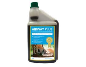 Global Herbs AirwayPlus-1ltr