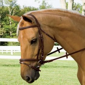Amerigo Flash Bridle with Rubber Reins Havana