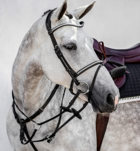 PS of Sweden Amsterdam Flash Bridle