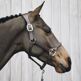 Kentucky Horsewear Anatomic Leather Halter