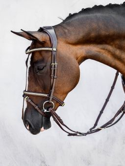 PS of Sweden Antwerp Flash Bridle