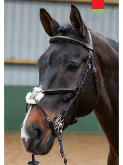 John Whitaker Eastwood Mexican Bridle - BR050
