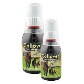 Collovet