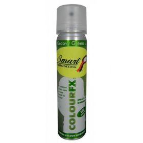 Smart Grooming Colour FX Quarter Marker Hair Colour Spray 75ml Green