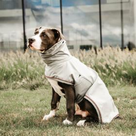Kentucky Dog Rain Coat