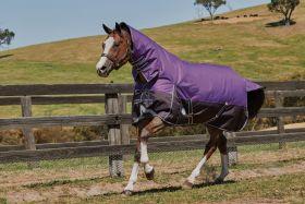 WeatherBeeta ComFiTec Plus Dynamic Combo Mediumweight WIDE Purple - Black