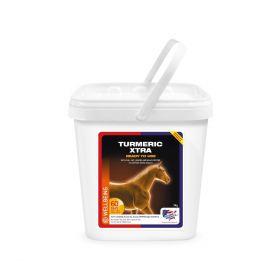 Equine America Turmeric Xtra 3kg - Equine America