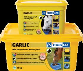 Horslyx Garlic Lick