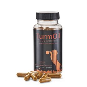 Golden Paste Company Turmeric Capsules for Pets - 90 Capsules - The Golden Paste Company