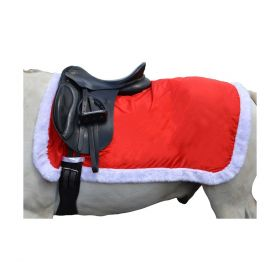 Hy Christmas Santa Exercise Sheet