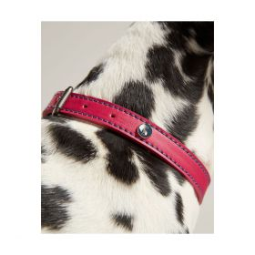 Joules Leather Dog Collar-Pink-XLarge Clearance