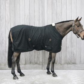 Kentucky Horsewear Cotton Sheet - Black