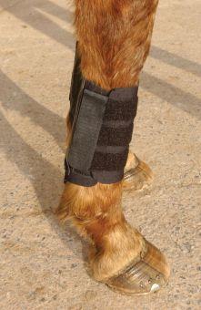Kitt Kool Brushing Boots