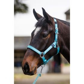 Mark Todd Headcollar Deluxe Padded with Lead Rope