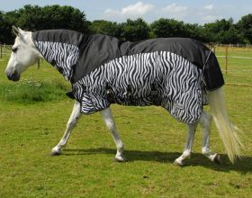 Rhinegold Zambia Full Neck Turnout/Fly Rug With Waterproof Topline And Side Skirts Zebra Print - Rhinegold