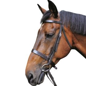 Mark Todd Hunter Bridle  Black