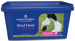 Dodson & Horrell Mud Heel