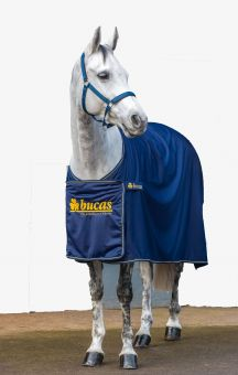 Bucas Panel Prize Cooler Navy - Gold