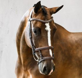 PS of Sweden Paris Bridle