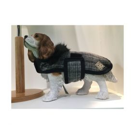 George & Dotty Bertie Dog Rug