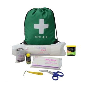 Lincoln First Aid Travel Bag - Lincoln