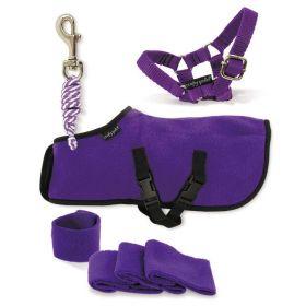 Crafty Ponies Rug Set Blue - Purple