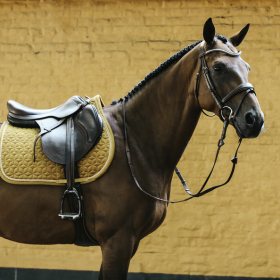 Kentucky Velvet Jumping Saddle Pad - Mustard