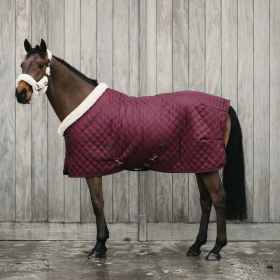 Kentucky Show Rug - Bordeaux
