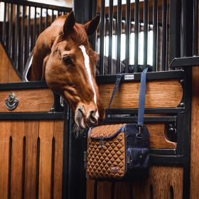 Someh Connect Grooming / Tournament Bag - Grace Gold