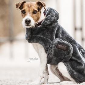 Kentucky Dog Coat Fake Fur - Grey