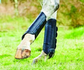 Weatherbeeta Cross Country Boots Hind