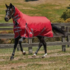 WeatherBeeta ComFiTec Classic Combo Neck Lite Turnout Rug Red - Silver