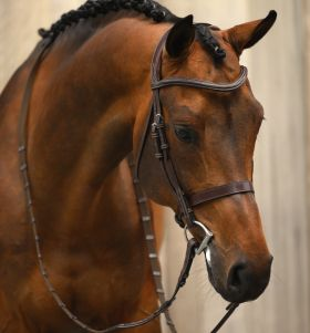 PS of Sweden Wellington Hunter Bridle
