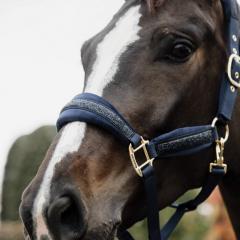 Kentucky Glitter Stone Halter - Black - Kentucky Horsewear